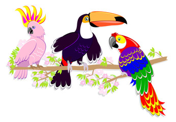 Set of cute fairyland parrots sitting on a branch. Illustration on white background. Vector cartoon image.