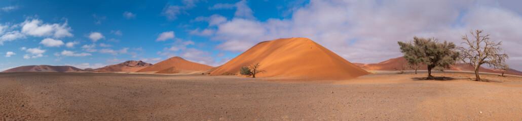 Poster Salmon Sossusvlei Namib Desert, in the Namib-Naukluft National Park