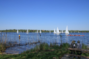 Berlin, Wannsee, Segelboot, Regatta, Kanu, People