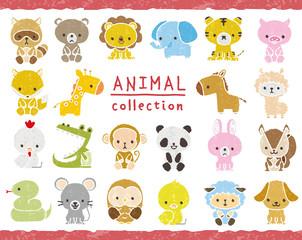 動物のセット 手描き風