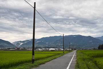 japanese countryside road and electric pole landscape