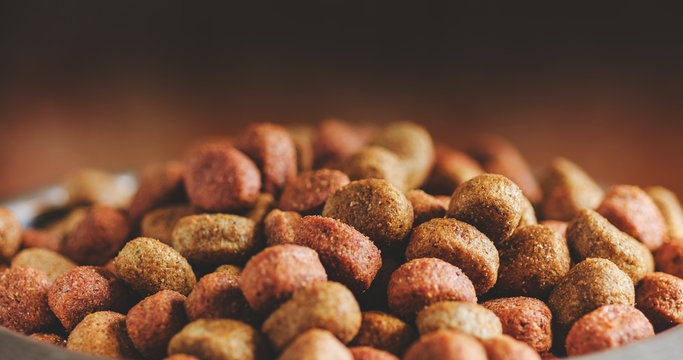 Dry dog food close-up. Food background