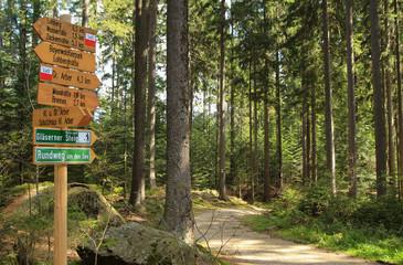 Wegweiser, Bavarian forest, Hiking Trail, Sign post