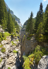 View of a deep limestone gorge Gletscherschlucht nearby resort of Grindelwald, Switzerland
