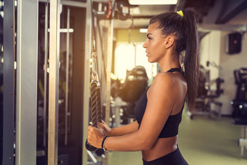 Tricep Rope Pulldown exercise during workout in gym