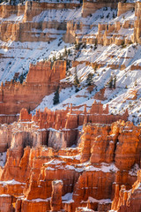 Wall Mural - USA national parks