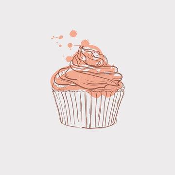 cupcake sketch theme vector art illustration