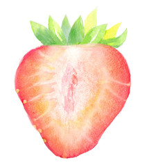 strawberry slice, watercolor hand-drawn drawing of a red berry, isolated illustration on a white background