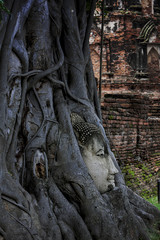 The face of Buddha statue in the tree at wat mahathat ayutthaya.