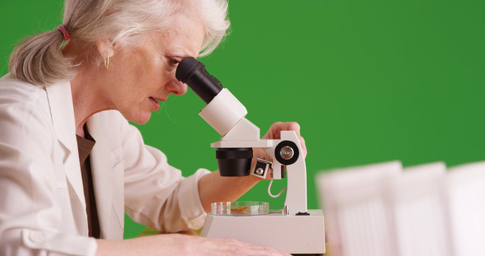 Senior scientist examining test sample with microscope in lab on green screen