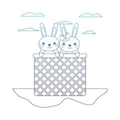 degraded line happy couple rabbit animal inside hamper