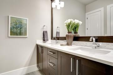Bathroom modern interior with dark hardwood cabinets and large mirror
