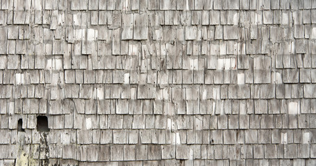 Weathered Gray Shingles