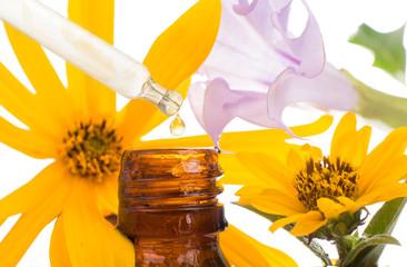 FLORITERAPIA BACHA - natural remedies.