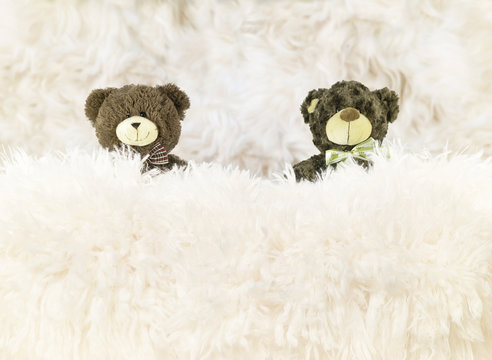 Closeup view of a bed with fur blankets and 2 brown teddy bears, studio backdrop for newborn.
