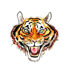 Watercolor illustration of the face of a roaring tiger
