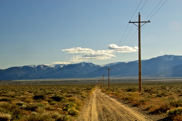 Dirt Road and Telephone Poles