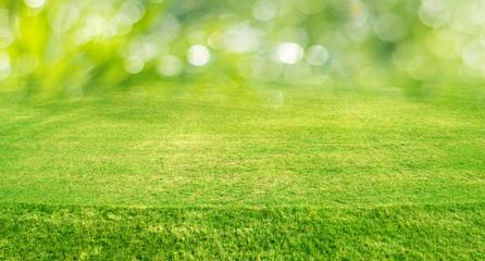 Green outdoor bokeh