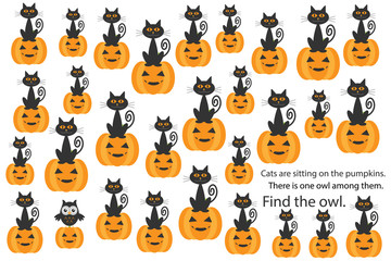 Find owl among cats on pumpkins, halloween fun education puzzle game for children, preschool worksheet activity for kids, task for the development of logical thinking and mind, vector illustration
