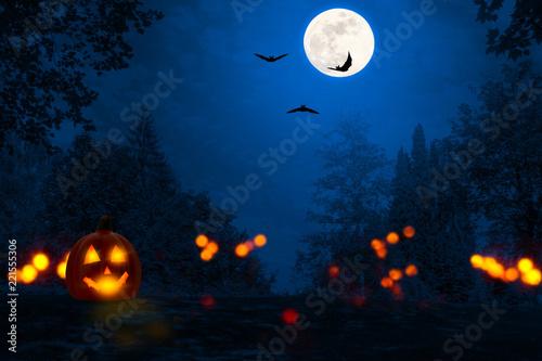jack laterne, fledermäuse, halloween nacht