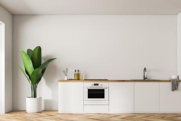 White kitchen island and plant, minimalism