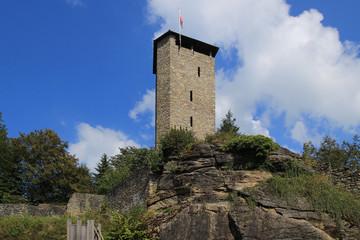 Bayerischer Wald, Burgruine Altnußberg