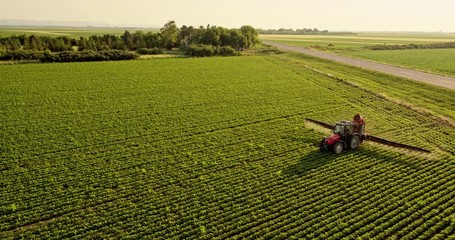 Wall Mural - Aerial drone shot of a farmer spraying soybean fields