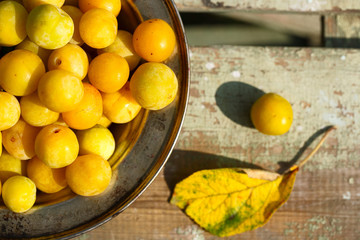 fresh harvest of homemade yellow plum. In an old metal plate on a wooden table. On green background