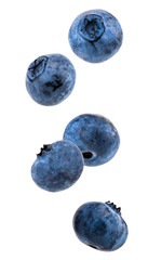 Falling blueberries isolated on a white background