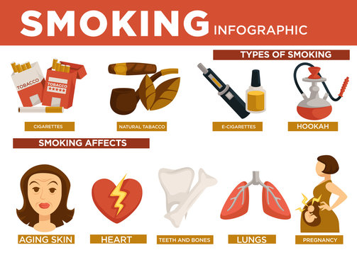 Smoking infographic types and affect on body vector