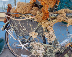 Bicycle Covered in Barnacles and Sponges