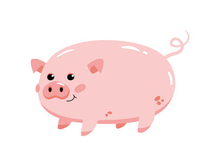 Cute pink pig on a white background