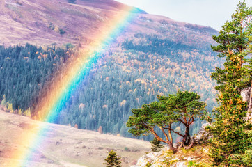 Beautiful scenic sunny golden autumn landscape of Caucasus mountains with lone pine tree and rainbow. Lagonaki highlands, Russia