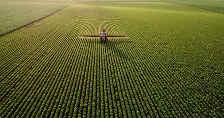 Fotomurales - Aerial drone shot of a farmer spraying soybean fields
