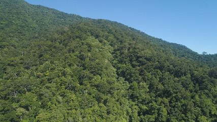 Aerial view of mountains with green forest, trees, jungle with blue sky. Slopes of mountains with tropical rainforest. Philippines, Luzon. Tropical landscape in Asia.