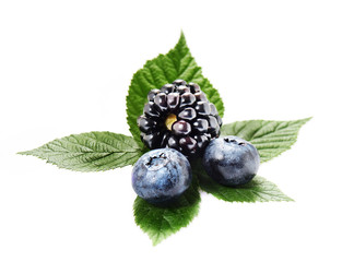 Blackberries and blueberries, isolated on white background. Fresh berry fruit goodness.