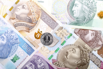 Polish Zloty coin on the background of Polish banknotes