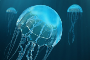 3D illustration background of jellyfish. Jellyfish swims in the ocean sea, light passes through the water, creating the effect of volume-rays. Dangerous blue jellyfish
