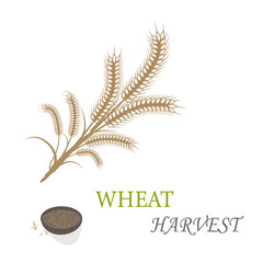 Wheat harvest season symbol and idea