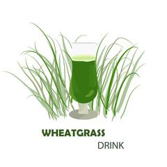 Wheat harvest season symbol and idea
