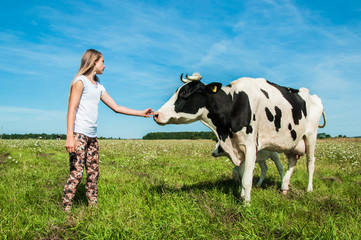 Girl is care a cow in a field
