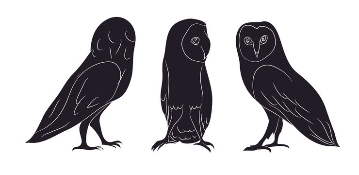 owl stands drawing silhouette, vector