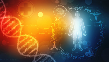 Human Anatomy with Dna Structure in medical background, Chromosome Man, Medical technology background