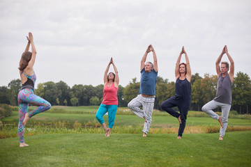 Mature people doing yoga exercise outdoor. Putting hands up on the park lawn.
