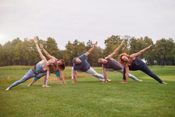 Foto auf Leinwand Gymnastik Group sport fitness exercise outdoor in the park. Stretching pose, gymnastics yoga training.