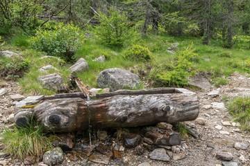 Maroder verwitterter Holztrog für Quellwasser, Österreich