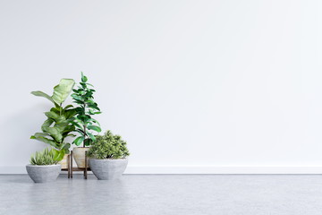 White empty room with plants have cement floor,3D rendering