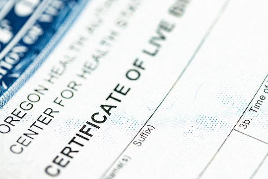 Certificate of live birth up close macro shot.