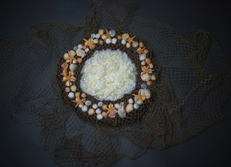 Sea shells and net Newborn photography digital background prop