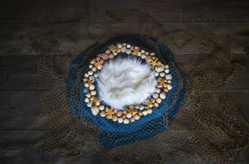 Fish net and seashell Newborn photography digital background prop.